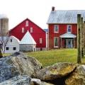 Elmwood Farm