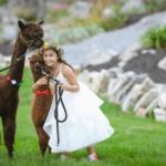 flower girl with alpacas